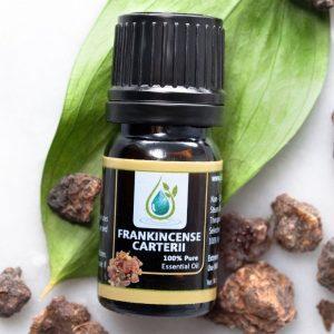 Organic Frankincense Carteri Essential Oil