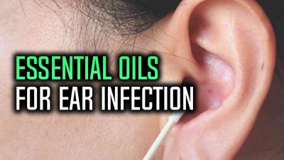 lavender essential oil for ear infection