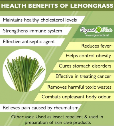 health benefits of lemongrass essential oil