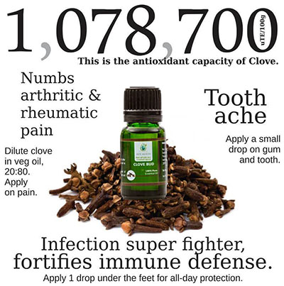 clove bud essential oil uses